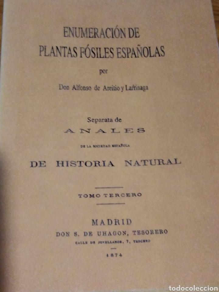 ENUMERACIÓN DE LAS PLANTAS FÓSILES ESPAÑOLAS. PALEONTOLOGIST. (Libros Antiguos, Raros y Curiosos - Ciencias, Manuales y Oficios - Paleontología y Geología)