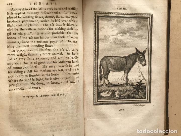Libros antiguos: NATURAL HISTORY GENERAL..., 7 tomos, 1985 y 1991. BUFFON/WILLIAM SMELLIE. 291 grabados - Foto 14 - 202015646