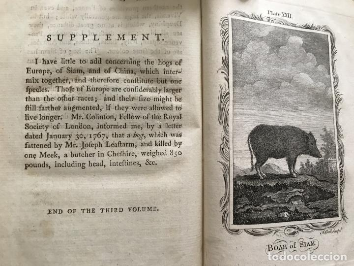 Libros antiguos: NATURAL HISTORY GENERAL..., 7 tomos, 1985 y 1991. BUFFON/WILLIAM SMELLIE. 291 grabados - Foto 24 - 202015646