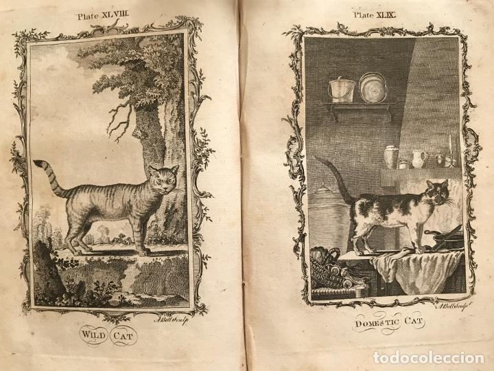 Libros antiguos: NATURAL HISTORY GENERAL..., 7 tomos, 1985 y 1991. BUFFON/WILLIAM SMELLIE. 291 grabados - Foto 35 - 202015646