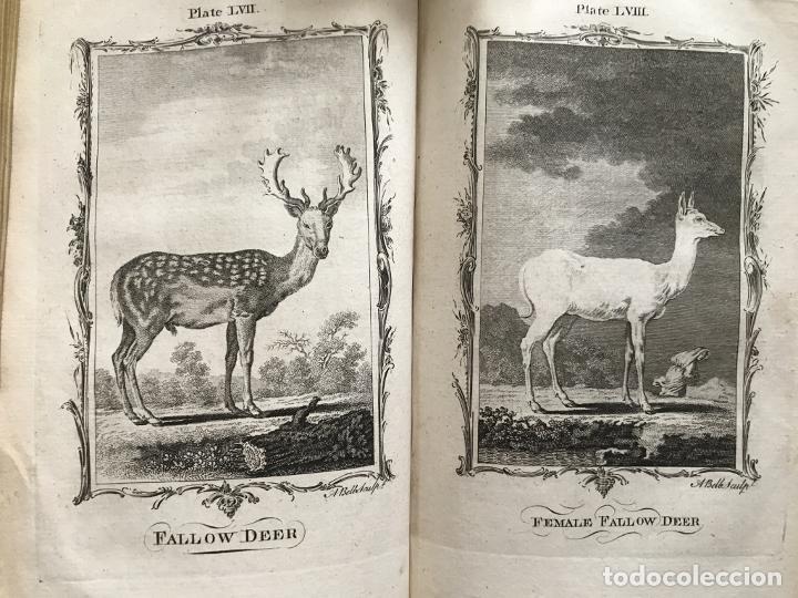 Libros antiguos: NATURAL HISTORY GENERAL..., 7 tomos, 1985 y 1991. BUFFON/WILLIAM SMELLIE. 291 grabados - Foto 39 - 202015646