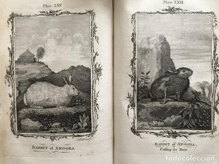 Libros antiguos: NATURAL HISTORY GENERAL..., 7 tomos, 1985 y 1991. BUFFON/WILLIAM SMELLIE. 291 grabados - Foto 40 - 202015646