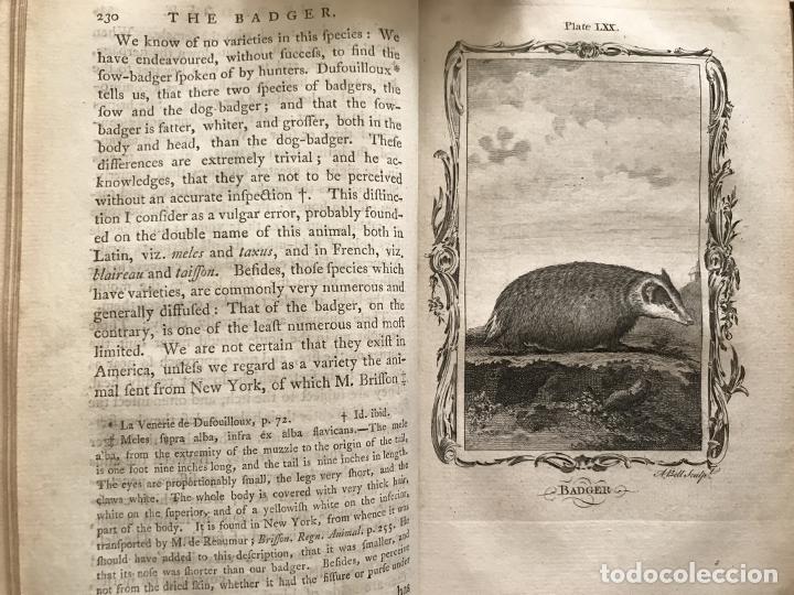Libros antiguos: NATURAL HISTORY GENERAL..., 7 tomos, 1985 y 1991. BUFFON/WILLIAM SMELLIE. 291 grabados - Foto 42 - 202015646