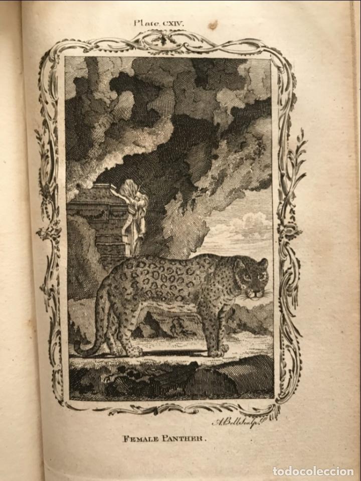 Libros antiguos: NATURAL HISTORY GENERAL..., 7 tomos, 1985 y 1991. BUFFON/WILLIAM SMELLIE. 291 grabados - Foto 51 - 202015646