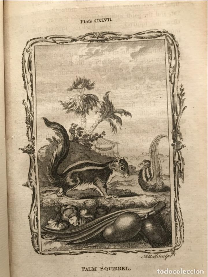 Libros antiguos: NATURAL HISTORY GENERAL..., 7 tomos, 1985 y 1991. BUFFON/WILLIAM SMELLIE. 291 grabados - Foto 54 - 202015646