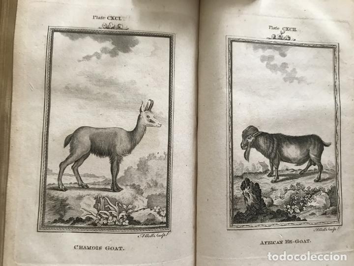 Libros antiguos: NATURAL HISTORY GENERAL..., 7 tomos, 1985 y 1991. BUFFON/WILLIAM SMELLIE. 291 grabados - Foto 60 - 202015646