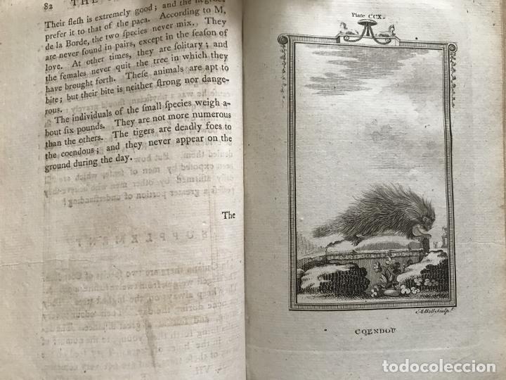 Libros antiguos: NATURAL HISTORY GENERAL..., 7 tomos, 1985 y 1991. BUFFON/WILLIAM SMELLIE. 291 grabados - Foto 64 - 202015646