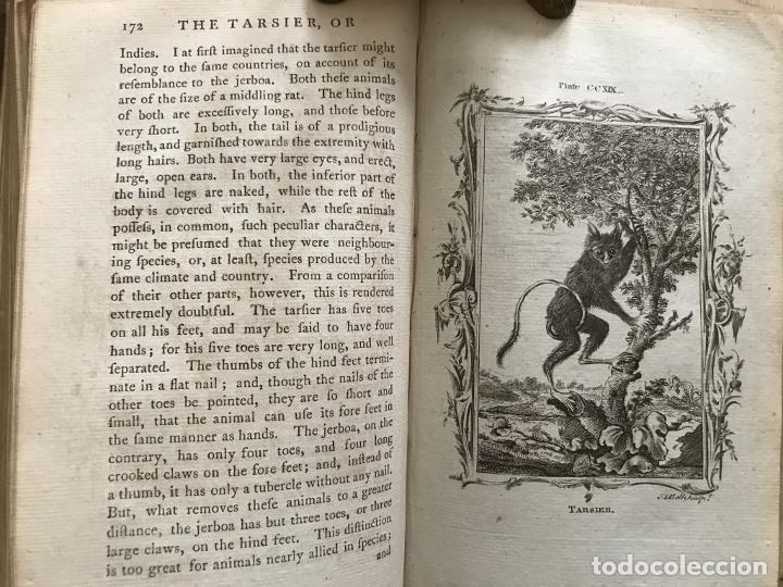 Libros antiguos: NATURAL HISTORY GENERAL..., 7 tomos, 1985 y 1991. BUFFON/WILLIAM SMELLIE. 291 grabados - Foto 66 - 202015646