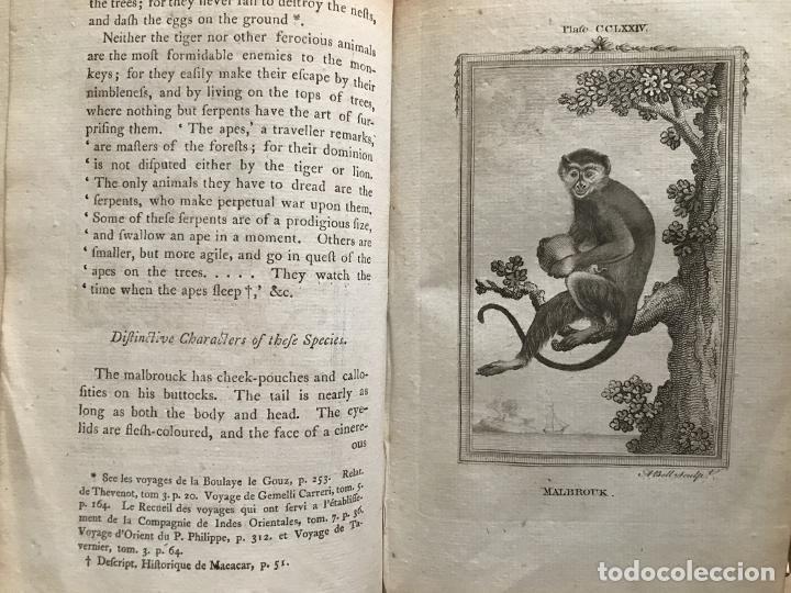 Libros antiguos: NATURAL HISTORY GENERAL..., 7 tomos, 1985 y 1991. BUFFON/WILLIAM SMELLIE. 291 grabados - Foto 74 - 202015646