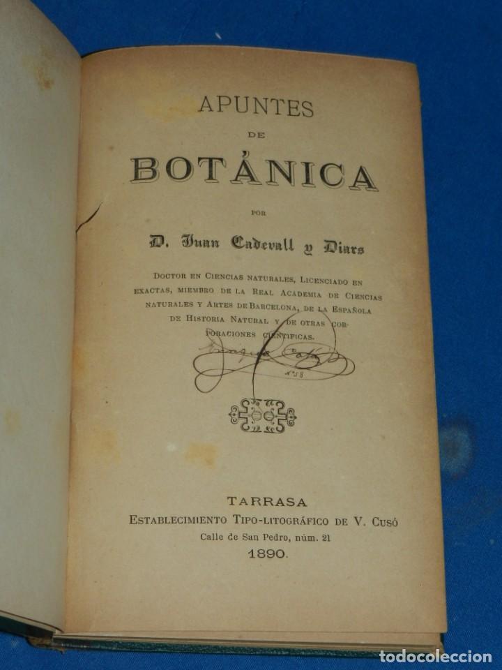 (MF) JUAN CADEVALL Y DIARS - APUNTES DE BOTÁNICA, TARRASA 1890, IMP. V CUSÓ (Libros Antiguos, Raros y Curiosos - Ciencias, Manuales y Oficios - Biología y Botánica)