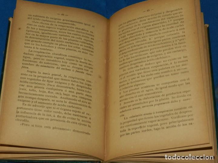 Libros antiguos: (MF) JUAN CADEVALL Y DIARS - APUNTES DE BOTÁNICA, TARRASA 1890, IMP. V CUSÓ - Foto 2 - 203799260