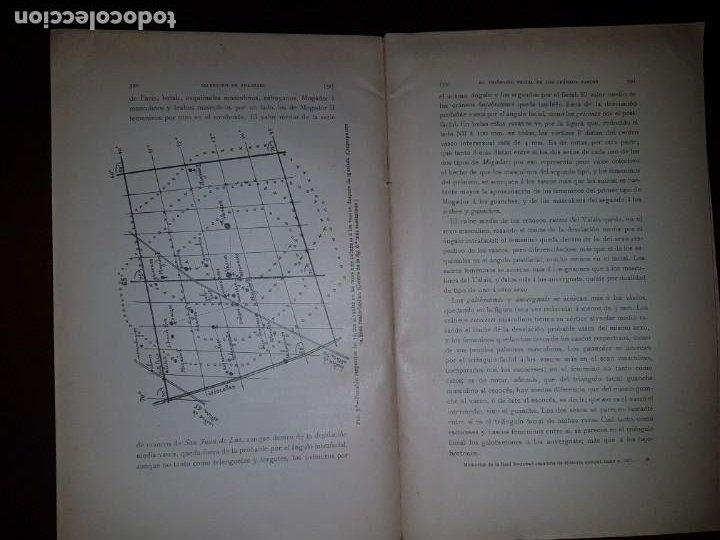 Libros antiguos: El triángulo facial de los cráneos vascos - 1917 - Foto 5 - 205737438