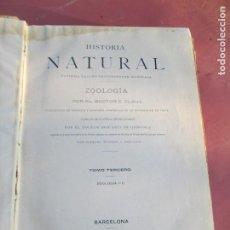 Livros antigos: HISTORIA NATURAL - DR. C. CLAUS - ZOOLOGÍA II - TOMO III - MONTANER Y SIMÓN 1891.. Lote 206908917