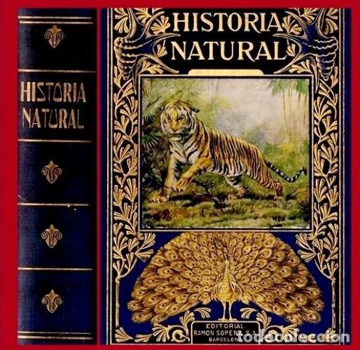 AÑO 1935 - BIBLIOTECA HISPANIA. HISTORIA NATURAL. CELSO AREVALO. ED. SOPENA. (Libros Antiguos, Raros y Curiosos - Ciencias, Manuales y Oficios - Biología y Botánica)