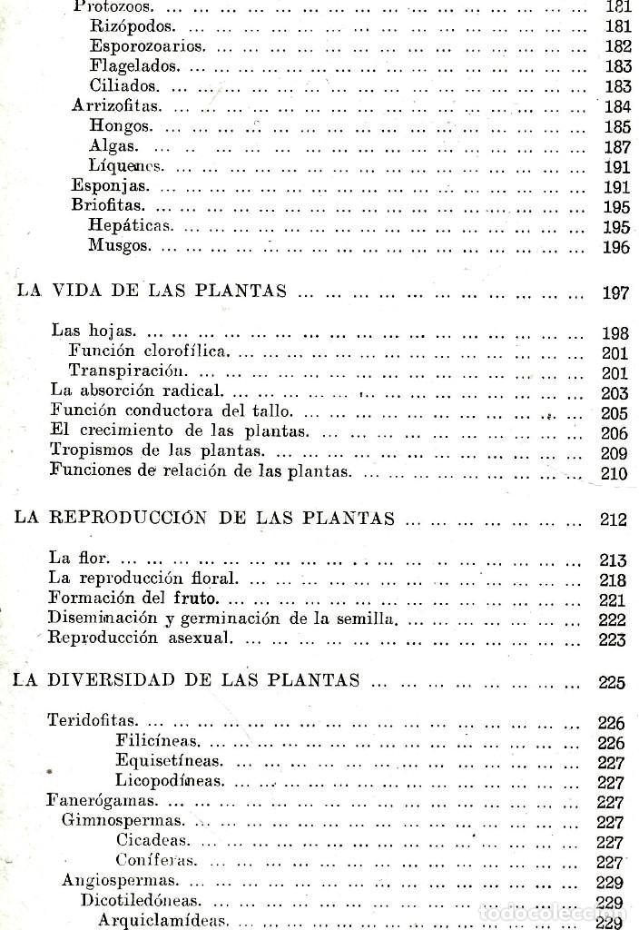 Libros antiguos: AÑO 1935 - BIBLIOTECA HISPANIA. HISTORIA NATURAL. CELSO AREVALO. ED. SOPENA. - Foto 10 - 207404705