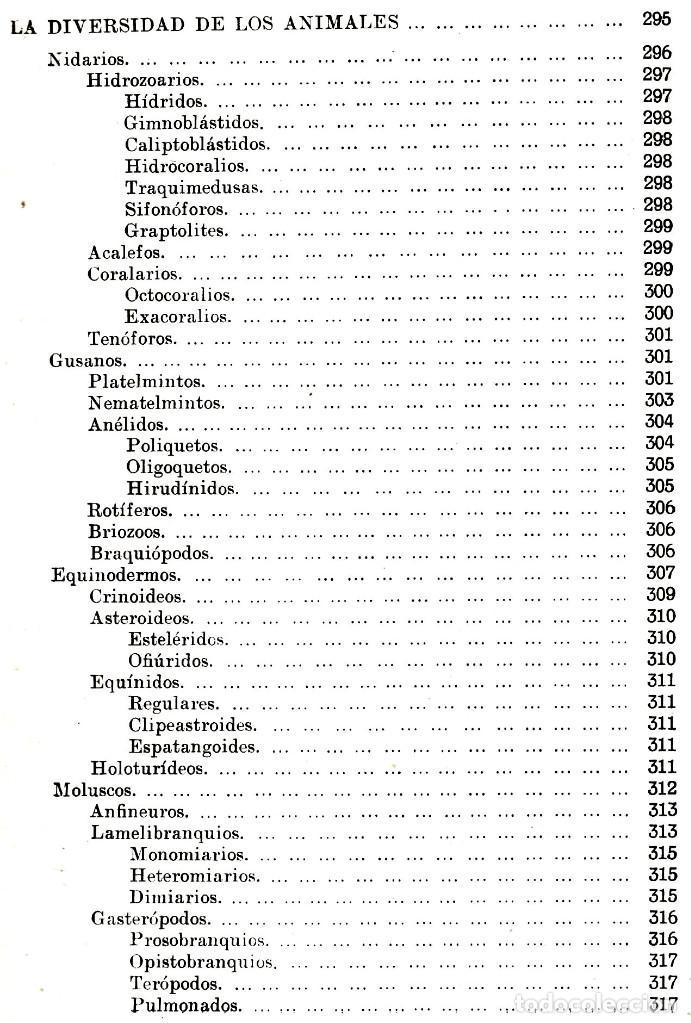 Libros antiguos: AÑO 1935 - BIBLIOTECA HISPANIA. HISTORIA NATURAL. CELSO AREVALO. ED. SOPENA. - Foto 12 - 207404705