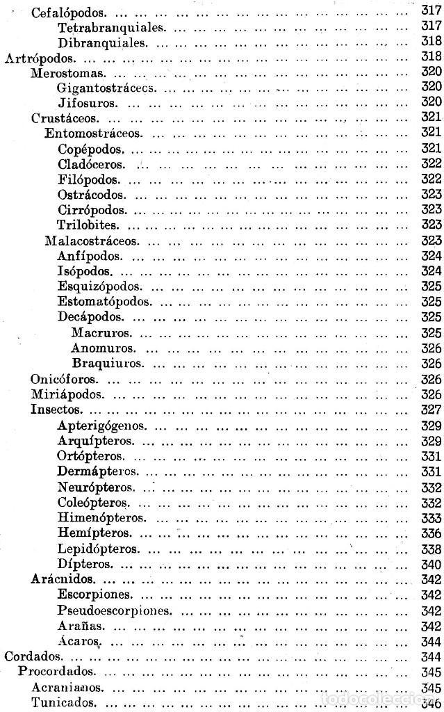 Libros antiguos: AÑO 1935 - BIBLIOTECA HISPANIA. HISTORIA NATURAL. CELSO AREVALO. ED. SOPENA. - Foto 13 - 207404705