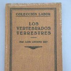 Libros antiguos: LOS VERTEBRADOS TERRESTRES, PROF. LUIS LOZANO REY, PROF. LUIS LOZANO REY, 1931. Lote 207975130