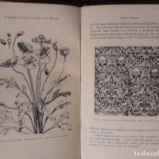 Libros antiguos: A BOOK OF STUDIES IN PLANT FROM AND DESIGN. ILLEY MIDGLEY 1895 FLORES ILUSTRACIONES DISEÑO. Lote 209619375