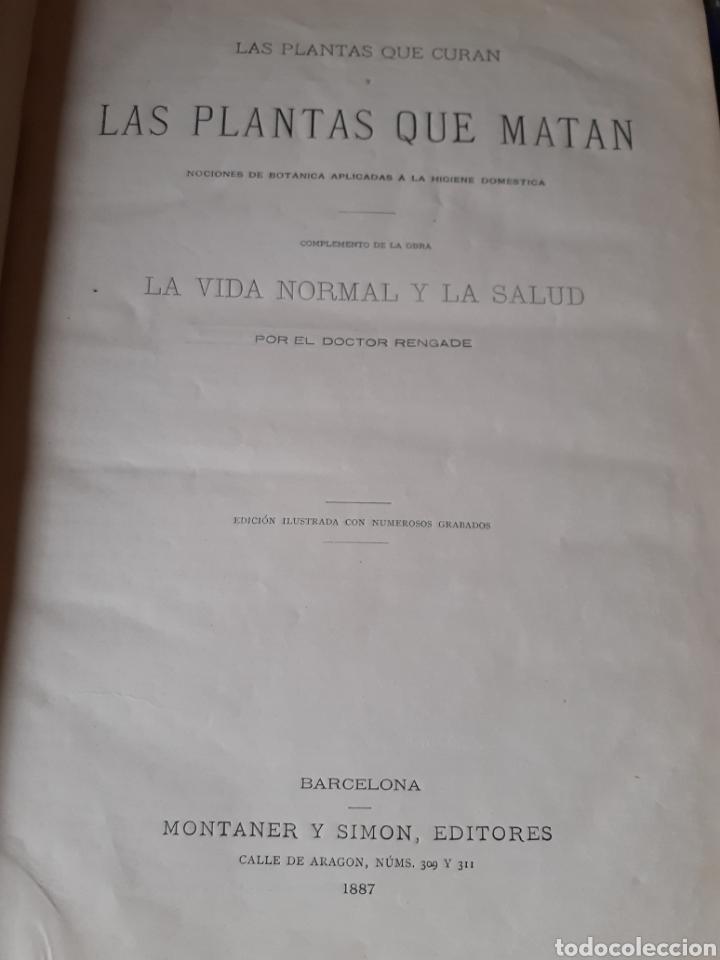 Libros antiguos: Las plantas que curan y las plantas que matan Montaner y Simón 1887 - Foto 2 - 209710487