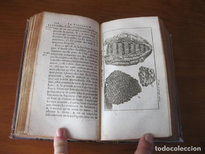 Libros antiguos: Le Spectacle de la Nature, vol. I, 1736. A. Pluche. Numerosos grabados - Foto 14 - 211695023