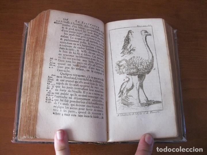 Libros antiguos: Le Spectacle de la Nature, vol. I, 1736. A. Pluche. Numerosos grabados - Foto 21 - 211695023