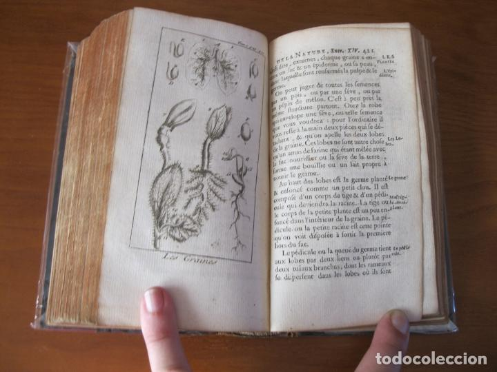 Libros antiguos: Le Spectacle de la Nature, vol. I, 1736. A. Pluche. Numerosos grabados - Foto 25 - 211695023