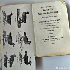 Libros antiguos: AÑO 1829. EL BUFFON DE LA JUVENTUD. ILUSTRADO.. Lote 212001825