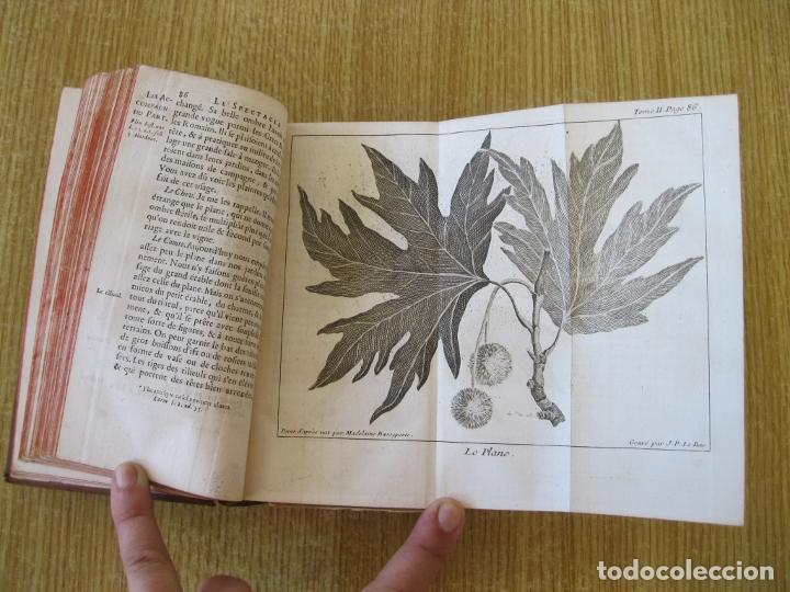 Libros antiguos: Le Spectacle de la Nature, tomo II, 1752. A. Pluche. Grabados - Foto 10 - 212248053