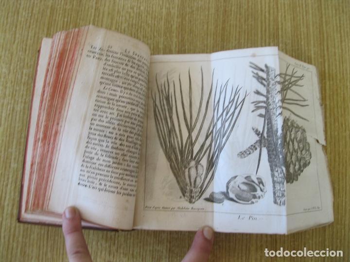 Libros antiguos: Le Spectacle de la Nature, tomo II, 1752. A. Pluche. Grabados - Foto 11 - 212248053