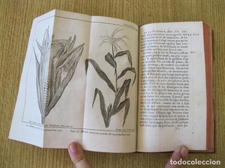 Libros antiguos: Le Spectacle de la Nature, tomo II, 1752. A. Pluche. Grabados - Foto 14 - 212248053