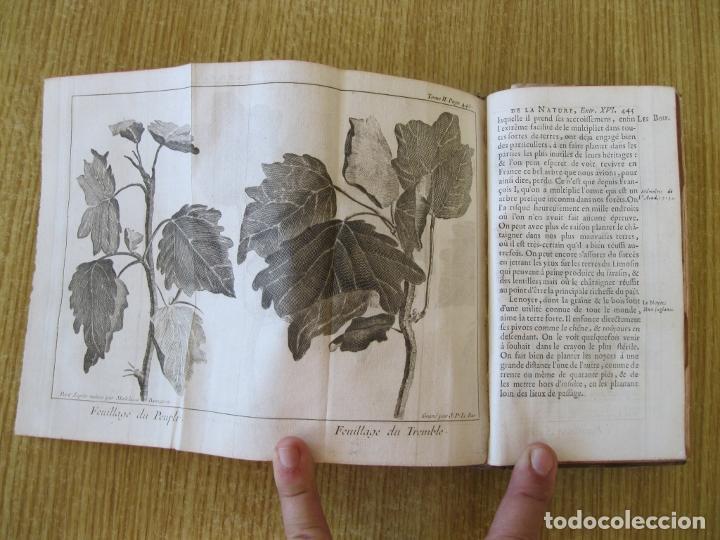 Libros antiguos: Le Spectacle de la Nature, tomo II, 1752. A. Pluche. Grabados - Foto 16 - 212248053