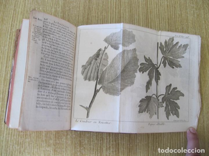 Libros antiguos: Le Spectacle de la Nature, tomo II, 1752. A. Pluche. Grabados - Foto 17 - 212248053