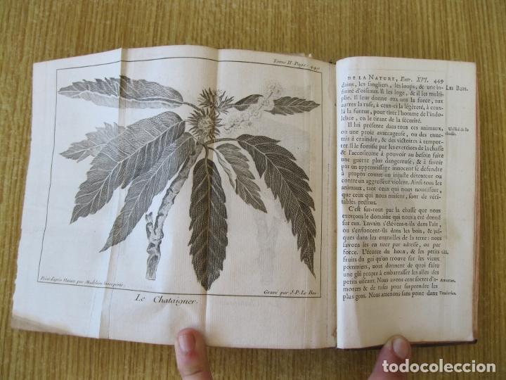 Libros antiguos: Le Spectacle de la Nature, tomo II, 1752. A. Pluche. Grabados - Foto 18 - 212248053