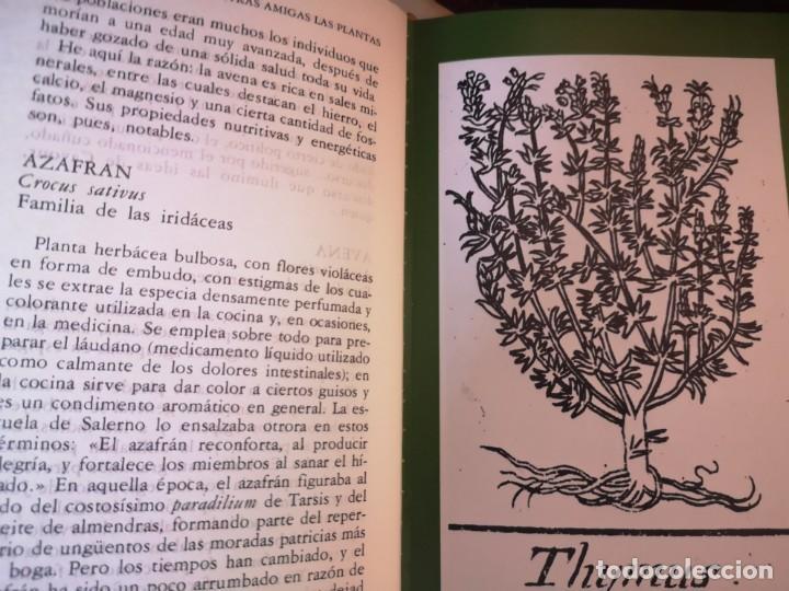Libros antiguos: NUESTRAS AMIGAS LAS PLANTAS. DANIELE MANTA. 3 TOMOS - Foto 4 - 212285511