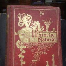 Livros antigos: HISTORIA NATURAL. ODON DE BUEN. BOTANICA - ZOOLOGIA. TOMO II. MANUEL SOLER. BARCELONA, 1898. Lote 213799710