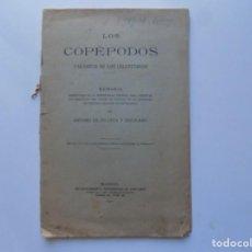 Libros antiguos: LIBRERIA GHOTICA. LOS COPÉPODOS. PARÁSITOS DE LOS CELENTÉREOS. POR ANTONIO DE ZULUETA.1911. FOLIO. Lote 215402430