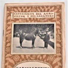 Libros antiguos: CABALLO Y YEGUA DE TRABAJO - JOSÉ ORENSANZ MOLINÉ - CATECISMO DEL AGRICULTOR Y GANADERO Nº 72 - 1922. Lote 215452633