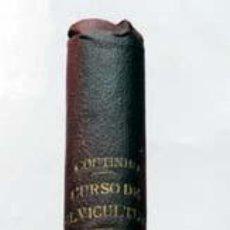 Libros antiguos: CURSO DE SILVICULTURA - TOMO II, ESBOÇO FLORA LENHOSA PORTUGUEZA, POR A.X.P. COUTINHO. LISBOA, 1887. Lote 216523687