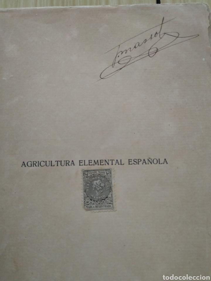 AGRICULTURA ELEMENTAL ESPAÑOLA, DE 1929 (Libros Antiguos, Raros y Curiosos - Ciencias, Manuales y Oficios - Bilogía y Botánica)