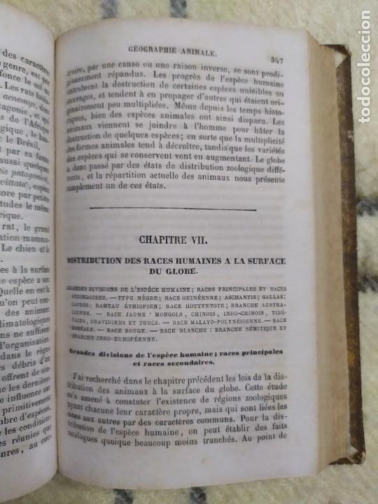 Libros antiguos: 1857. La tierra y el hombre. Geología, geografía y etnología. Maury. - Foto 8 - 220529372