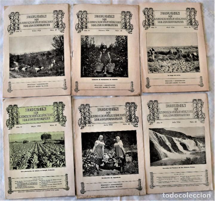 Libros antiguos: LOTE 17 EJEMPLARES BOLETÍN DE INFORMACIÓN TÉCNICA DE AGRICULTURA AÑOS 1931, 1933, 1934 Y 1935 TABACO - Foto 2 - 221632478