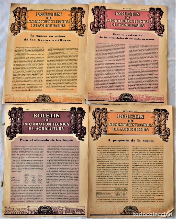 Libros antiguos: LOTE 17 EJEMPLARES BOLETÍN DE INFORMACIÓN TÉCNICA DE AGRICULTURA AÑOS 1931, 1933, 1934 Y 1935 TABACO - Foto 4 - 221632478