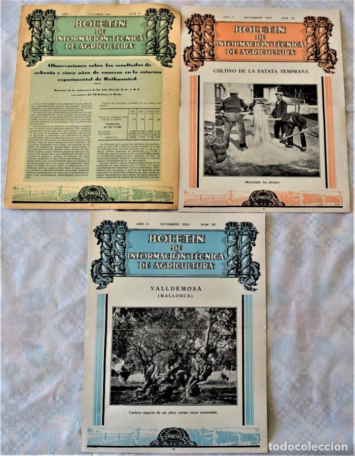 Libros antiguos: LOTE 17 EJEMPLARES BOLETÍN DE INFORMACIÓN TÉCNICA DE AGRICULTURA AÑOS 1931, 1933, 1934 Y 1935 TABACO - Foto 5 - 221632478