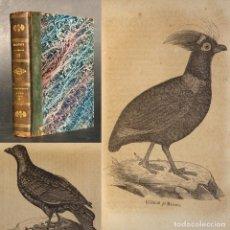 Libros antiguos: 1848 - BIOLOGIA - ORNITOLOGIA - GRABADOS - PICHON - PALOMA. Lote 222388311