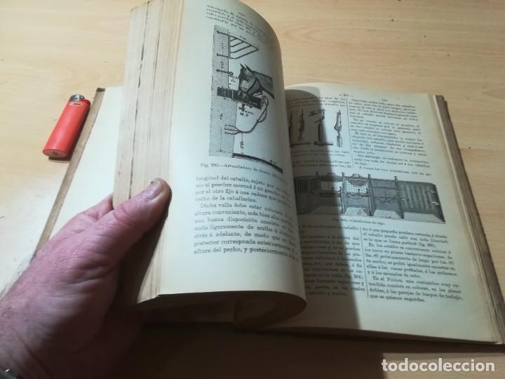 Libros antiguos: DICCIONARIO DE VETERINARIA, CAGNY - GOBERT / TOMO SEGUNDO / ED FELIPE GONZALEZ ROJAS / P+206 - Foto 11 - 225050360