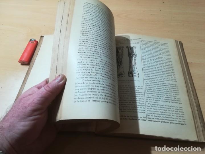Libros antiguos: DICCIONARIO DE VETERINARIA, CAGNY - GOBERT / TOMO SEGUNDO / ED FELIPE GONZALEZ ROJAS / P+206 - Foto 13 - 225050360
