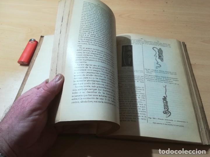 Libros antiguos: DICCIONARIO DE VETERINARIA, CAGNY - GOBERT / TOMO SEGUNDO / ED FELIPE GONZALEZ ROJAS / P+206 - Foto 15 - 225050360
