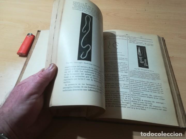 Libros antiguos: DICCIONARIO DE VETERINARIA, CAGNY - GOBERT / TOMO SEGUNDO / ED FELIPE GONZALEZ ROJAS / P+206 - Foto 16 - 225050360