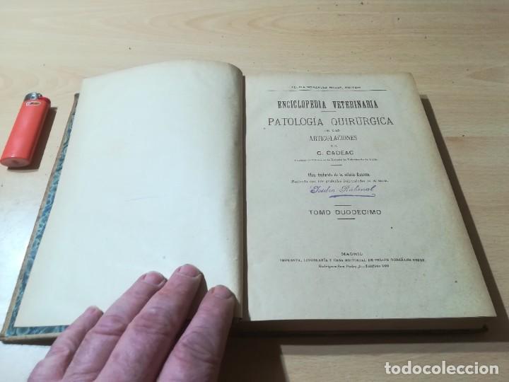 Libros antiguos: ENCICLOPEDIA VETERINARIA C CADEAC / PATOLOGIA QUIRURGICA ARTICULACIONES T DUODECIMO / ED FELIPE GONZ - Foto 5 - 225050865